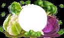 капуста краснокочанная, красная капуста, цветная капуста, пекинская капуста, брокколи, брюсельская капуста, белокачанная капуста, капуста, баннер, овощи, red cabbage, cauliflower, beijing cabbage, brussels sprouts, white cabbage, cabbage, vegetables, rotkohl, blumenkohl, pekinger kohl, brokkoli, rosenkohl, weißkohl, kohl, gemüse, chou rouge, chou-fleur, chou de pékin, brocoli, choux de bruxelles, chou blanc, chou, bannière, légumes, col roja, coliflor, col de beijing, brócoli, coles de bruselas, col blanca, col, pancarta, verduras, cavolo rosso, cavolfiore, cavolo di pechino, broccoli, cavoletti di bruxelles, cavolo bianco, cavolo, bandiera, verdure, repolho roxo, couve-flor, repolho de pequim, brócolis, couve de bruxelas, repolho branco, repolho, banner, legumes, капуста червонокачанна, червона капуста, цвітна капуста, пекінська капуста, брокколі, брюсельська капуста, білокачанна капуста, банер, овочі