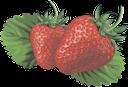 клубника, ягода клубники, красный, strawberries, red, erdbeeren, rot, fraises, rouges, fresas, rojas, fragole, rosso, morangos, vermelho, полуниця, ягода полуниці, червоний