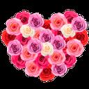 розы, сердце из цветов, розы красные, валентинка, подарок на день святого валентина, heart from flowers, roses red, a gift for valentine's day, rosen, herzen, blumen, rote rosen, geschenk am valentinstag, roses, coeur, fleur, roses rouges, valentine, cadeau pour la saint valentin, corazón, rosas rojas, san valentín, el regalo en el día de san valentín, rose, cuore, fiore, rose rosse, san valentino, regalo a san valentino, rosas, coração, flor, rosas vermelhas, namorados, presente no dia dos namorados