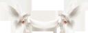 голубь, белый голубь, голубь мира, белая птица, отряд пернатых, пернатые, птицы, dove, white dove, dove of peace, white bird, squad of birds, birds, taube, weiße taube, friedenstaube, weißer vogel, vogelgruppe, vögel, colombe, colombe blanche, colombe de la paix, oiseau blanc, escouade d'oiseaux, oiseaux, paloma, paloma blanca, paloma de la paz, pájaro blanco, escuadrón de pájaros, pájaros, colomba, colomba bianca, colomba della pace, uccello bianco, squadra di uccelli, uccelli, pomba, pomba branca, pomba da paz, pássaro branco, esquadrão de pássaros, pássaros, голуб, білий голуб, голуб миру, білий птах, загін пернатих, пернаті, птиці, баннер