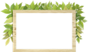 листья, зеленый лист, зеленое растение, белый лист, баннер, чистый лист, leaves, green leaf, green plant, white leaf, clean sheet, blätter, grünes blatt, grüne pflanze, weißes blatt, fahne, sauberes blatt, feuilles, feuille verte, plante verte, feuille blanche, bannière, feuille propre, hojas, hoja verde, hoja blanca, pancarta, hoja limpia, foglie, foglia verde, pianta verde, foglia bianca, banner, foglio pulito, folhas, folha verde, planta verde, folha branca, faixa, folha limpa, листя, зелений лист, зелена рослина, білий аркуш, банер, чистий аркуш