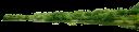 пейзаж, река, берег, деревья, парк, зеленые деревья, деревья с зелеными листьями, landscape, river, shore, trees, green trees, trees with green leaves, landschaft, fluss, strand, bäume, park, grüne bäume, bäume mit grünen blättern, paysage, rivière, plage, arbres, parc, arbres verts, des arbres avec des feuilles vertes, paisaje, río, playa, árboles, árboles verdes, los árboles con hojas verdes, paesaggio, fiume, mare, alberi, parco, alberi verdi, alberi con foglie verdi, paisagem, rio, praia, árvores, parque, árvores verdes, árvores com folhas verdes
