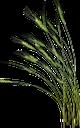 хлеб, злаки, колоски, пшеница, колосья пшеницы, хлебороб, bread, cereals, ears, wheat, ears of wheat, grain-grower, brot, getreide, ohren, weizen, weizenähren, getreidezüchter, pain, les céréales, les oreilles, le blé, les épis de blé, de céréales-récoltant, el pan, los cereales, las orejas, grano-cultivador, pane, cereali, orecchie, grano, spighe di grano, grano coltivatore, pão, cereais, orelhas, trigo, espigas de trigo, grão-produtor