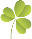 лист клевера, leaf clover, лист конюшини, зеленый лист, трилистник, ирландия, день святого патрика, green leaf, ireland, st. patrick's day, grünes blatt, kleeblatt, irland, st. patrick tag, feuille de trèfle, feuille verte, shamrock, l'irlande, de la saint-patrick, hoja de trébol, hoja verde, trébol, día de san patricio, quadrifoglio, verde foglia, trifoglio, irlanda, giorno di san patrizio, folha do trevo, folha verde, trevo, da irlanda, dia de são patrício, зелений лист, трилисник, ірландія, день святого патріка