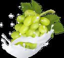 фруктовый йогурт, брызги йогурта, питьевой йогурт, фрукты в молоке, брызги молока, виноградный йогурт, гроздь винограда, зелёный виноград, fruit yogurt, yogurt splash, drinking yoghurt, fruit in milk, milk splash, grape yogurt, bunch of grapes, green grapes, fruchtjoghurt, joghurtspritzer, trinkjoghurt, obst in milch, milchspritzer, traubenjoghurt, weintraube, grüne trauben, yaourt aux fruits, éclaboussures de yaourt, yaourt à boire, fruits dans le lait, éclaboussures de lait, yogourt aux raisins, grappe de raisin, raisins verts, yogur de frutas, yogur splash, yogur para beber, fruta en leche, splash de leche, yogur de uva, racimo de uvas, yogurt alla frutta, spruzzata di yogurt, yogurt da bere, frutta nel latte, spruzzata di latte, yogurt all'uva, grappolo d'uva, uva verde, iogurte de frutas, respingo de iogurte, iogurte líquido, fruta no leite, respingo de leite, iogurte de uva, cacho de uvas, uvas verdes, фруктовий йогурт, бризки йогурту, питний йогурт, фрукти в молоці, бризки молока, виноградний йогурт, гроно винограду, зелений виноград