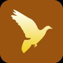 christianity- peace- dove- icon