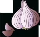 чеснок, головка чеснока, специи, garlic, spices, knoblauch, gewürze, ail, épices, ajo, especias, aglio, spezie, alho, especiarias, часник, головка часнику, спеції