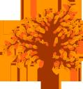 дерево, осеннее дерево, лиственное дерево, зеленое растение, желтый лист, осень, флора, tree, autumn tree, deciduous tree, green plant, yellow leaf, autumn, baum, herbst baum, laubbaum, grüne pflanze, gelbes blatt, herbst, arbre, arbre automne, arbre à feuilles caduques, plante verte, feuille jaune, automne, flore, árbol, árbol de otoño, árbol de hoja caduca, hoja amarilla, otoño, albero, albero autunnale, albero deciduo, pianta verde, foglia gialla, autunno, árvore, folha caduca, planta verde, folha amarela, outono, flora, осіннє дерево, листяне дерево, зелена рослина, жовтий лист, осінь