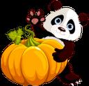 хэллоуин, тыква, панда, pumpkin, kürbis, potiron, calabaza, halloween, zucca, o dia das bruxas, abóbora, panda