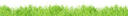 трава, лужайка, природа, зеленая трава, зеленое растение, green grass, green plant, grünes gras, grünpflanze, herbe verte, plante verte, hierba verde, erba verde, pianta verde, grama verde, planta verde