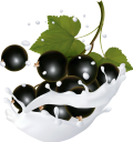 фрукты в молоке, фруктовый йогурт, брызги молока, черная смородина, fruit in milk, fruit yogurt, spray of milk, black currant, früchte in milch, fruchtjoghurt, milchspray, schwarze johannisbeere, fruits au lait, yaourt aux fruits, spray de lait, cassis, fruta en leche, yogurt de fruta, spray de leche, grosella negra, frutta nel latte, yogurt alla frutta, spruzzi di latte, ribes nero, фрукти в молоці, фруктовий йогурт, бризки молока, чорна смородина