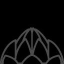 india, lotus
