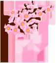 сакура, флора, весна, цветы, цветущая вишня, зеленый лист, spring, flowers, cherry blossoms, green leaf, frühling, blumen, kirschblüten, grünes blatt, flore, printemps, fleurs, fleurs de cerisier, feuille verte, flores de cerezo, la hoja verde, fiori, fiori di ciliegio, verde foglia, flora, primavera, flores, flores de cerejeira, folha verde