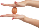 рука, жест, золотое яйцо, куриное яйцо, hand, gesture, golden egg, chicken egg, goldenes ei, hühnerei, main, geste, oeuf d'or, oeuf de poule, huevo de oro, huevo de gallina, mano, uovo d'oro, uovo di gallina, mão, gesto, ovo de ouro, ovo de galinha, золоте яйце, куряче яйце