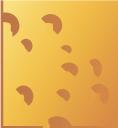 сыр, молочный продукт, еда, cheese, dairy product, food, käse, milchprodukte, lebensmittel, fromage, produit laitier, nourriture, queso, productos lácteos, comida, formaggio, latticini, cibo, queijo, produtos lácteos, alimentos, сир, молочний продукт, їжа