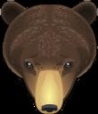 животные, медведь, голова медведя, гризли, бурый медведь, tiere, bär, bärenkopf, braunbär, animaux, ours, tête d'ours, ours brun, animales, oso, cabeza de oso, oso pardo, animali, orso, testa d'orso, grizzly, orso bruno, animais, urso, cabeça de urso, urso pardo, тварини, ведмідь, голова ведмедя, грізлі, бурий ведмідь
