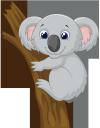 коала, австралийские животные, австралийская фауна, животные, фауна, australian animals, australian fauna, animals, australische tiere, australische fauna, tiere, animaux australiens, faune australienne, animaux, faune, animales australianos, animales, koala, animali australiani, animali, coala, animais australianos, fauna australiana, animais, fauna, австралійські тварини, австралійська фауна, тварини