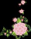 цветы, розовые цветы, цветочный узор, flowers, pink flowers, floral pattern, blumen, rosa blumen, blumenmuster, fleurs, fleurs roses, motif floral, flores de color rosa, estampado de flores, fiori, fiori rosa, motivo floreale, flores, flores cor de rosa, teste padrão floral, квіти, рожеві квіти, квітковий візерунок