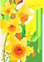 цветы, цветочная композиция, нарцисс, желтый цветок, флора, flowers, flower arrangement, daffodil, yellow flower, blumen, blumenschmuck, narzisse, gelbe blume, fleurs, composition florale, jonquille, fleur jaune, flore, arreglo floral, flor amarilla, fiori, composizione floreale, giunchiglia, fiore giallo, flores, arranjo de flor, narciso, flor amarela, flora, квіти, квіткова композиція, нарцис, жовта квітка