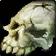inv, misc, bone, orcskull, 01