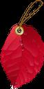 осенняя листва, торговые стикеры, этикетка, торговля, красный лист, осень, опавшая листва, осенний лист растения, природа, fall foliage, trade stickers, label, trade, red leaf, fall, fallen leaves, autumn plant leaf, herbstlaub, handelsaufkleber, etikett, handel, rotes blatt, herbst, laub, herbstpflanzenblatt, natur, feuillage d'automne, autocollants commerciaux, étiquette, commerce, feuille rouge, automne, feuilles mortes, feuille de plante d'automne, nature, follaje de otoño, pegatinas comerciales, comercio, hoja roja, otoño, hojas caídas, hoja de planta otoñal, naturaleza, fogliame autunnale, adesivi commerciali, etichetta, commercio, foglia rossa, autunno, foglie cadute, foglia della pianta autunnale, natura, folhagem de outono, adesivos comerciais, etiqueta, comércio, folha vermelha, outono, folhas caídas, folha de planta de outono, natureza, осіннє листя, торговельні стікери, етикетка, торгівля, червоний лист, осінь, опале листя, осінній лист рослини