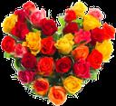 флора, цветы, роза, сердце из цветов, день святого валентина, любовь, flowers, heart, flower, valentines day, love, blumen, herz, blume, valentinstag, liebe, flore, fleurs, coeur, fleur, saint valentin, amour, corazón, el día de san valentín, fiori, rose, cuore, fiore, san valentino, amore, flora, flores, rosa, coração, flor, dia dos namorados, amor