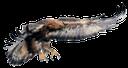 орел, кондор, парящий орел, eagle, adler, kondor, aigle, soaring eagle, águila, cóndor, águila de alto vuelo, aquila, aquila impennata, águia, condor, águia crescente