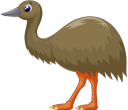 страус эму, австралийский страус, австралийские животные, австралийская фауна, птицы, животные, фауна, ostrich emu, australian ostrich, australian animals, australian fauna, birds, animals, straußenemu, australischer strauß, australische tiere, australische fauna, vögel, tiere, autruche, autruche australienne, animaux australiens, faune australienne, oiseaux, animaux, faune, animales australianos, aves, animales, emu di struzzo, struzzo australiano, animali australiani, uccelli, animali, avestruz emu, avestruz australiano, animais australianos, fauna australiana, pássaros, animais, fauna, страус ему, австралійський страус, австралійські тварини, австралійська фауна, птахи, тварини