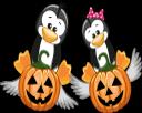хэллоуин, тыква, пингвин, праздник, pumpkin, penguin, holiday, kürbis, pinguin, feiertag, citrouille, pingouin, vacances, calabaza, pingüino, vacaciones, halloween, zucca, pinguino, vacanze, dia das bruxas, abóbora, pinguim, férias, хеллоуїн, гарбуз, пінгвін, свято