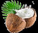 орех, кокос, walnut, coconut, walnuss, kokosnuss, noix, noix de coco, nuez, noce, noce di cocco, nozes, coco