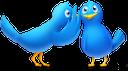 gossip, birds