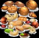 арахис, земляной орех, лесной орех, фундук, орехи кешью, грецкий орех, фисташки, миндаль, орехи, peanuts, hazelnuts, cashew nuts, walnuts, pistachios, almonds, nuts, erdnüsse, haselnüsse, cashewnüsse, walnüsse, pistazien, mandeln, nüsse, arachides, noisettes, noix de cajou, pistaches, amandes, noix, cacahuetes, avellanas, anacardos, pistachos, almendras, nueces, arachidi, nocciole, anacardi, pistacchi, mandorle, noci, amendoim, avelã, castanha de caju, pistache, amêndoas, nozes, арахіс, земляний горіх, лісовий горіх, горіхи кеш'ю, волоський горіх, фісташки, мигдаль, горіхи