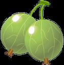 крыжовник, зеленая ягода, ягода крыжовника, зеленый, gooseberries, green berry, gooseberry berry, green, stachelbeeren, grüne beeren, stachelbeere, grün, groseilles à maquereau, baie verte, groseille à maquereau, vert, grosellas espinosas, bayas verdes, bayas de grosella espinosa, verdes, uva spina, bacca verde, uva spina d'uva, groselhas, baga verde, baga de groselha, verde, агрус, зелена ягода, ягода агрусу, зелений