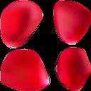 лепестки розы, роза, цветочные лепестки, цветы, красный, rose petals, flower petals, flowers, red, rosenblüten, blütenblätter, blumen, rot, pétales de rose, rose, pétales de fleurs, fleurs, rouge, pétalos de rosa, pétalos de flores, rojo, petali di rosa, petali di fiori, fiori, rosso, pétalas de rosa, rosa, pétalas de flores, flores, vermelho, пелюстки троянди, троянда, пелюстки квітів, квіти, червоний