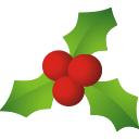 christmas, mistletoe