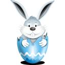 bunny, in, egg, blue