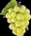 виноград, гроздь винограда, белый виноград, винная ягода, виноделие, grapes, a bunch of grapes, white grapes, wine berry, winemaking, trauben, eine weintraube, weiße trauben, weinbeeren, weinbereitung, raisin, grappe de raisin, raisin blanc, baie de vin, vinification, un racimo de uvas, uvas blancas, bayas de vino, elaboración del vino, uva, un grappolo d'uva, uva bianca, bacca di vino, vinificazione, uvas, um cacho de uvas, uvas brancas, vinho berry, vinificação, гроно винограду, білий виноград, винна ягода, виноробство