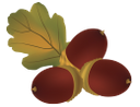 желудь, осенняя листва, осень, autumn leaves, autumn, oak leaf, acorn, herbstlaub, herbst, eichenlaub, eicheln, feuillage d'automne, automne, feuille de chêne, gland, follaje de otoño, otoño, hoja de roble, bellota, fogliame autunnale, autunno, foglia di quercia, ghianda, folhagem de outono, outono, folha do carvalho, bolota, осіннє листя, осінь, лист дуба, жолудь