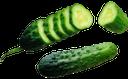 огурец, овощи, спелый огурец, зеленый огурец, cucumber, vegetables, ripe cucumber, green cucumber, gurke, gemüse, reife gurke, grüne gurke, concombre, légumes, concombre mûr, concombre vert, vegetales, cetriolo, ortaggi, cetriolo maturo, cetriolo verde, pepino, legumes, pepino maduro, pepino verde