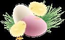 пасха, крашенка, пасхальные яйца, праздник, зеленая трава, цыпленок, easter, krashenka, easter eggs, holiday, pysanka, green grass, chicken, ostern, ostereier, urlaub, osterei, grünes gras, huhn, pâques, oeufs de pâques, vacances, oeuf de pâques, herbe verte, poulet, pascua, huevos de pascua, día de fiesta, huevo de pascua, la hierba verde, pasqua, uova di pasqua, vacanza, uovo di pasqua, erba verde, pollo, páscoa, krashenki, ovos de páscoa, feriado, ovo de páscoa, grama verde, frango, паска, крашанки, свято, писанка, зелена трава, курча