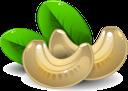 орех кешью, орехи, cashew nut, nuts, cashewnuss, nüsse, noix de cajou, noix, anacardo, nueces, anacardi, noci, castanha de caju, nozes, горіх кеш'ю, горіхи