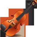 музыкальные инструменты, скрипка, струнные музыкальные инструменты, музыка, musical instruments, violin, stringed musical instruments, music, musikinstrumente, geige, streichinstrumente, musik, instruments de musique, violon, instruments de musique à cordes, musique, instrumentos musicales, violín, instrumentos musicales de cuerda, strumenti musicali, strumenti musicali a corde, musica, instrumentos musicais, violino, instrumentos musicais de cordas, música, музичні інструменти, струнні музичні інструменти, музика