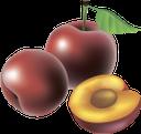 слива, фрукты, косточка сливы, синий, plum, plum stone, blue, pflaume, frucht, pflaumenstein, blau, prune, fruit, pierre de prune, bleu, ciruela, prugna, frutta, pietra di prugna, blu, fruta, ameixa, azul, фрукти, кісточка сливи, синій