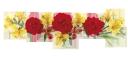 красные цветы, желтые цветы, красная роза, red flowers, yellow flowers, red rose, rote blüten, gelbe blüten, rote rose, fleurs rouges, fleurs jaunes, rose rouge, flores rojas, flores amarillas, rosa roja, fiori rossi, fiori gialli, rosa rossa, flores vermelhas, flores amarelas, rosa vermelha