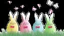 пасха, крашенка, куриное яйцо, праздник, пасхальное яйцо, праздничное украшение, заяц, easter, painted, chicken egg, holiday, easter egg, holiday decoration, hare, ostern, gemalt, hühnerei, feiertag, osterei, feiertagsdekoration, hase, pâques, peint, oeuf de poule, vacances, oeuf de pâques, décoration de vacances, lièvre, pascua, huevo de gallina, fiesta, huevo de pascua, decoración navideña, liebre, pasqua, dipinto, uovo di gallina, vacanza, uovo di pasqua, decorazione festiva, lepre, páscoa, pintado, ovo de galinha, feriado, ovo de páscoa, decoração de feriado, lebre, паска, писанка, куряче яйце, свято, пасхальне яйце, святкове прикрашання, заєць