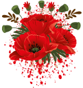 красные маки, полевые цветы, мак, red poppies, wildflowers, poppies, rote mohnblumen, wildblumen, mohn, coquelicots rouges, fleurs sauvages, pavot, amapolas rojas, amapola, papaveri rossi, fiori selvatici, papaveri, papoilas vermelhas, flores silvestres, papoula, червоні маки, польові квіти