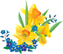 цветок нарцисса, желтый цветок, нарцисс, васильки, букет цветов, цветы, флора, желтый, daffodil flower, yellow flower, daffodil, bouquet of flowers, flowers, yellow, narzissenblume, gelbe blume, narzisse, kornblumen, blumenstrauß, blumen, gelb, fleur de jonquille, fleur jaune, jonquille, bleuets, bouquet de fleurs, fleurs, flore, jaune, flor de narciso, flor amarilla, acianos, ramo de flores, amarillo, fiore narciso, fiore giallo, giunchiglia, fiordalisi, mazzo di fiori, fiori, giallo, flor daffodil, flor amarela, narciso, cornflowers, buquê de flores, flores, flora, amarelo, квітка нарциса, жовта квітка, нарцис, волошки, букет квітів, квіти, жовтий