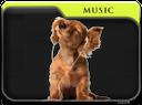 folder music, puppy, dog, папка музыка, собака, щенок