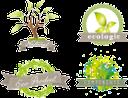 экология, экологический продукт, натуральный продукт, стикер, этикетка, товарный знак, ecología, producto ecológico, producto natural, etiqueta engomada, ecologia, produto ecológico, produto natural, adesivo, etiqueta, marca registrada, écologie, produit écologique, produit naturel, autocollant, étiquette, marque, ökologie, ökologisches produkt, naturprodukt, aufkleber, etikett, marke, ecology, ecological product, natural product, sticker, label, trademark, лист