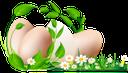 пасхальные яйца, пасха, крашенка, пасхальное яйцо, праздник, цветы, зеленая трава, easter eggs, easter, krashenka, easter egg, holiday, flowers, green grass, ostereier, ostern, osterei, urlaub, blumen, grünes gras, oeufs de pâques, pâques, oeuf de pâques, vacances, fleurs, herbe verte, huevos de pascua, pascua, huevo de pascua, día de fiesta, hierba verde, uova di pasqua, pasqua, uovo di pasqua, vacanze, fiori, erba verde, ovos de páscoa, a páscoa, krashenki, ovo da páscoa, feriado, flores, grama verde, крашанки, паска, писанка, крашанка, свято, квіти, зелена трава